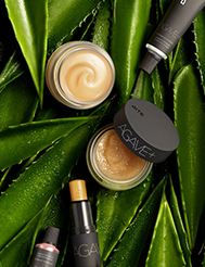 Get succulent lips with Agave+ superfood lip care